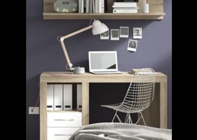 Mesas de estudio y escritorios.